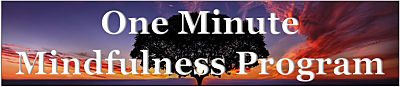 MBSR-one-minute-mindfulness-for-physicians-online-training_opt-400W